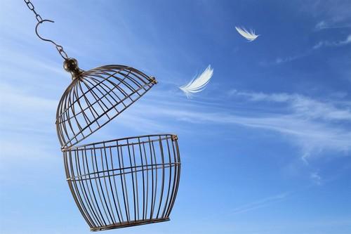 Change: Siamo Noi Il Cambiamento Che Stavamo Aspettando?